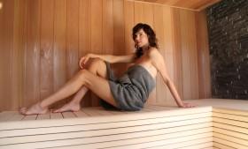 Sauna Wellux